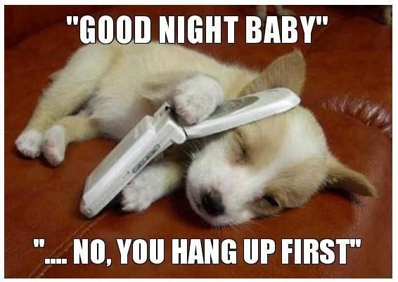 43 Best Funny Goodnight Memes Of All Time