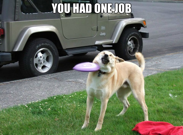 48 Best Funny You Had One Job Memes Of All Time
