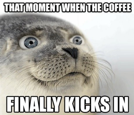 42 Best Funny Coffee Memes Of All Time