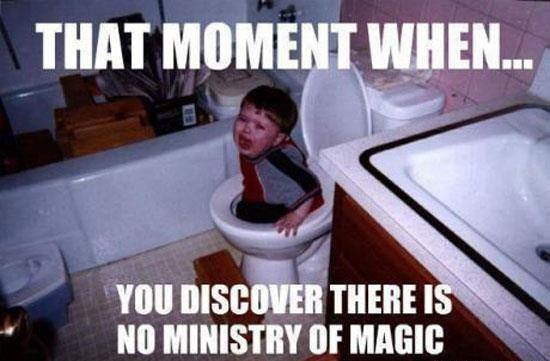 47 Best Funny Harry Potter Memes Of All Time