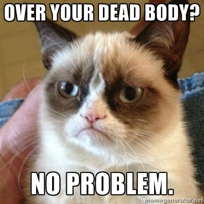 45 Best Funny Grumpy Cat Memes Of All Time