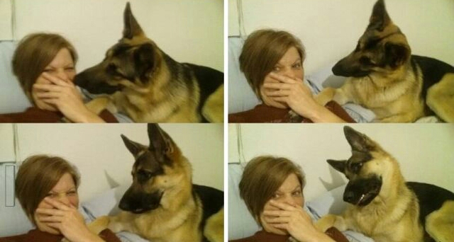 Funny and Awkward Moments Caught on Camera #27 (40 Pics)