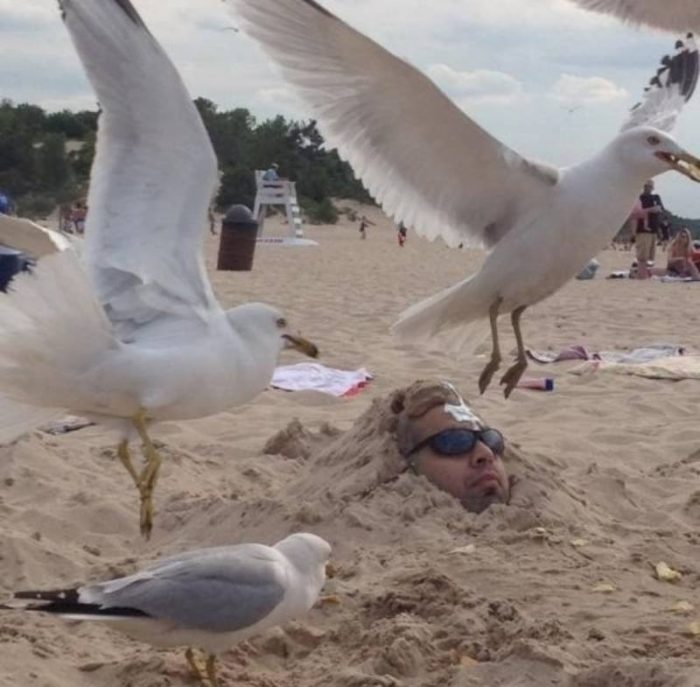 10 Truly Disastrous Vacation Photos