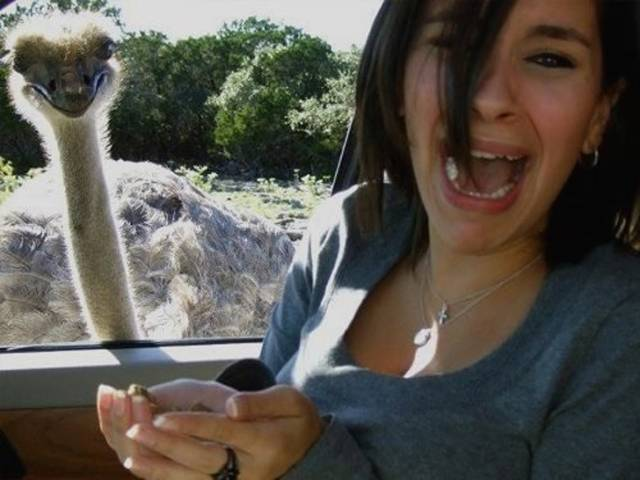 20 Tragically Awkward Vacation Photos You Can't Miss