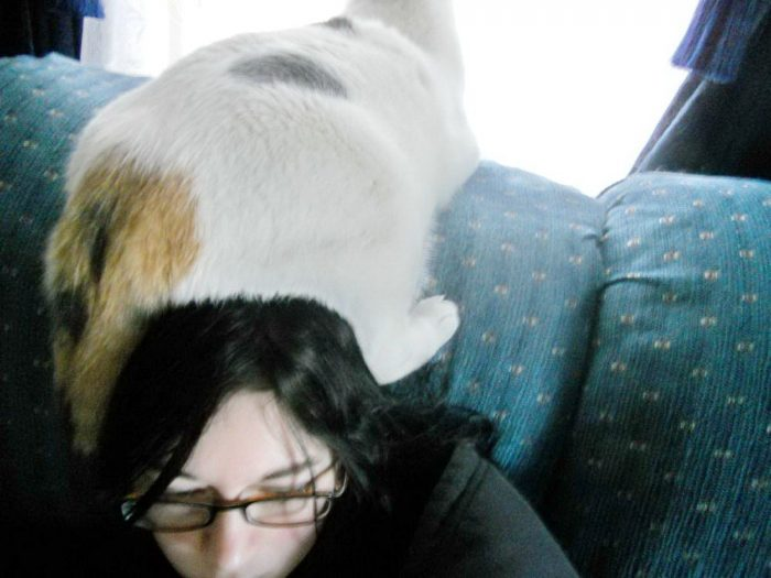 Funny Pictures To Make Your Day (60 Photos)