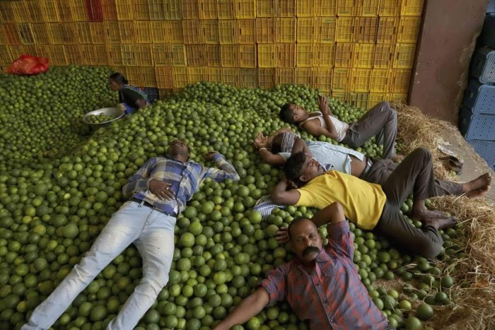 Daily Life In India (23 Photos)