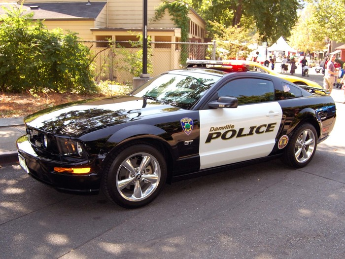 Elite Police Cars From Around The World (15 Photos)