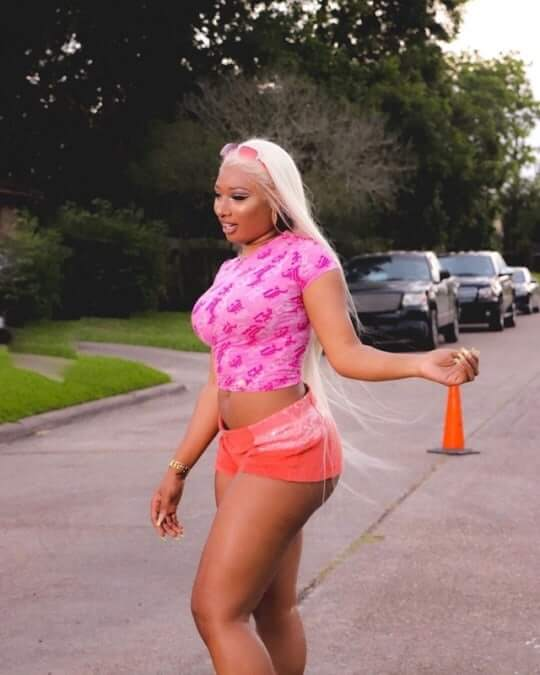 Megan Thee Stallion Hot Boobs Pictures And Fashion Style (49 Photos)