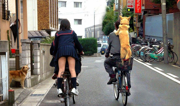 Cool Pictures Say More Than Just Thousand Words (37 Photos)