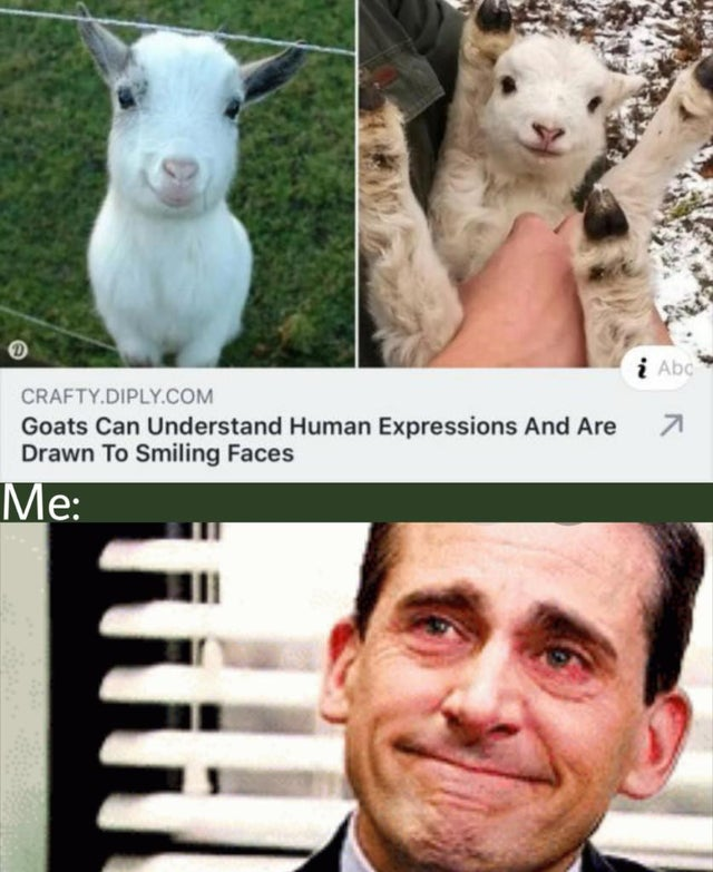 Funny Memes To Make Your Laugh (48 Memes)