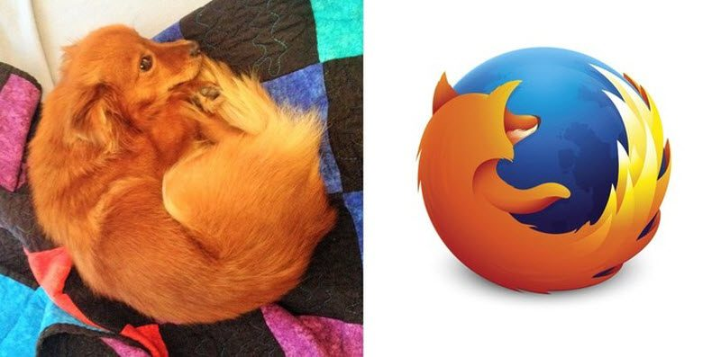 Funny Things And People Whose Similarities Go Wild (42 Photos)