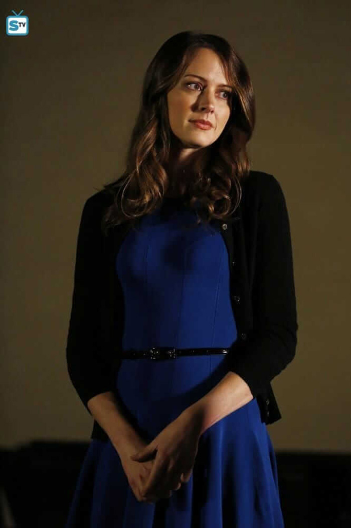 Amy Acker Hot Pictures, Bikini And Fashion Style (49 Photos)