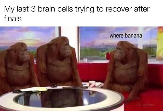 Funny Memes To Make Your Laugh (95 Memes)