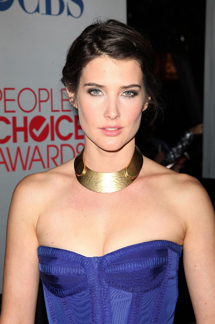 Cobie Smulders Hot Pictures, Bikini And Fashion Style (61