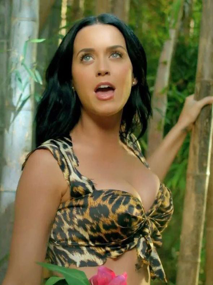 Katy Perry Hot Bikini, Boobs And Butt Pictures (70 Photos)