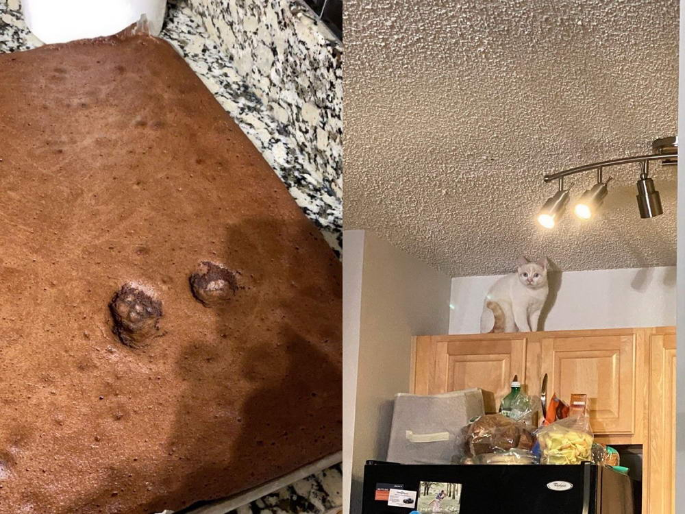 Funny Epic Fails Can Happen To Everyone (35 Photos)