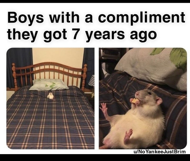Funny Memes To Make Your Laugh (48 Photos)