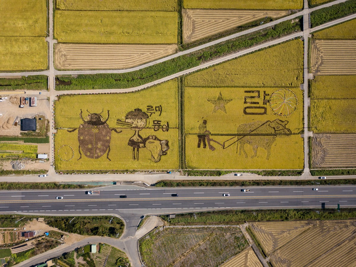Interesting And Cool Pictures From South Korea (40 Photos)