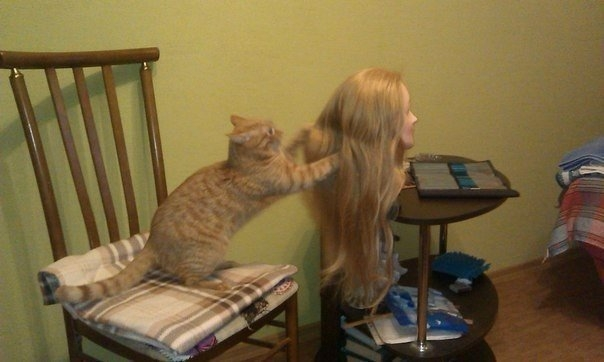 Weird Pictures Can Not Be Explained, WTF (28 Photos)