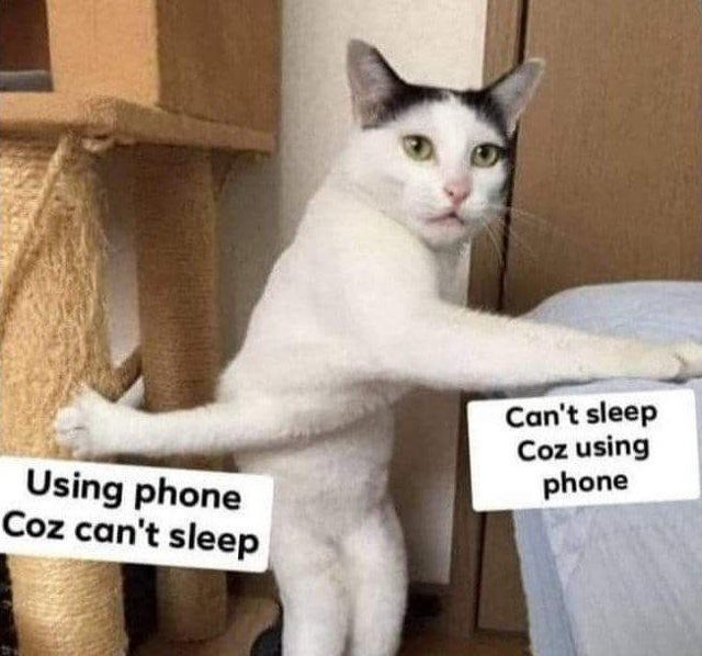 Funny Memes To Make Your Laugh (41 Memes)