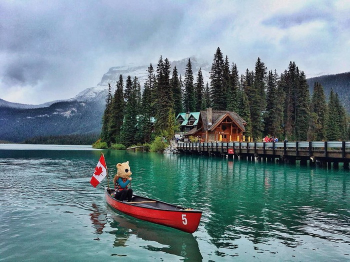 Funny And Awesome Pictures From Canada (34 Photos)