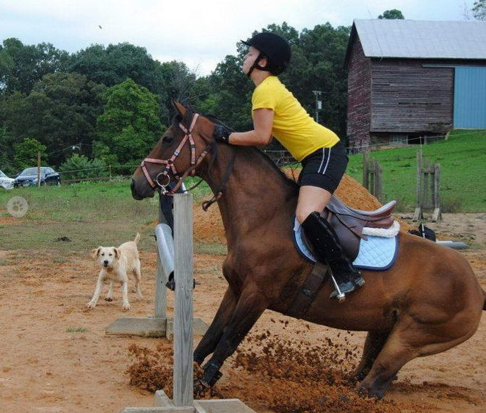 Funny Epic Fails Can Happen To Everyone (41 Photos)