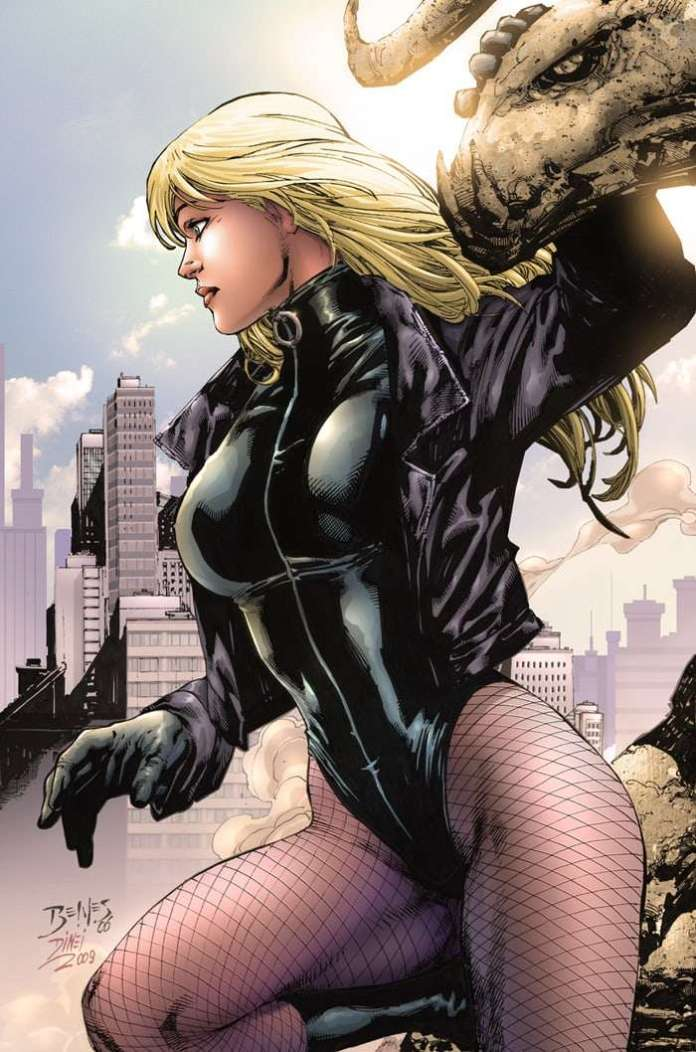 Black Canary Sexiest Pictures (41 Photos)