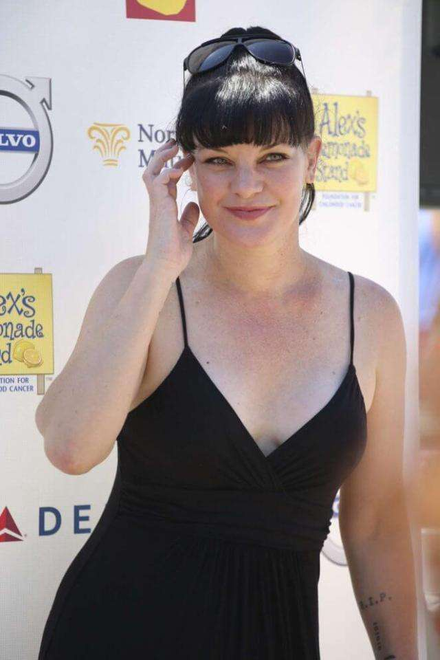 Pauley Perrette Hottest Pictures (41 Photos)