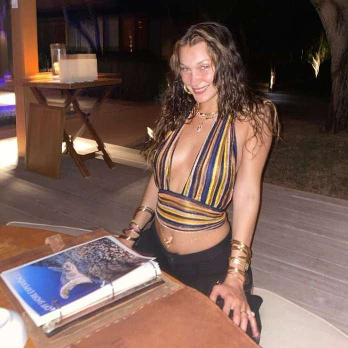 Bella Hadid Hottest Pictures (41 Photos)