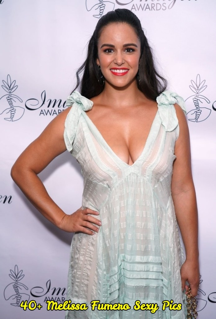Melissa Fumero Hot And Sexy Pictures (41 Photos)